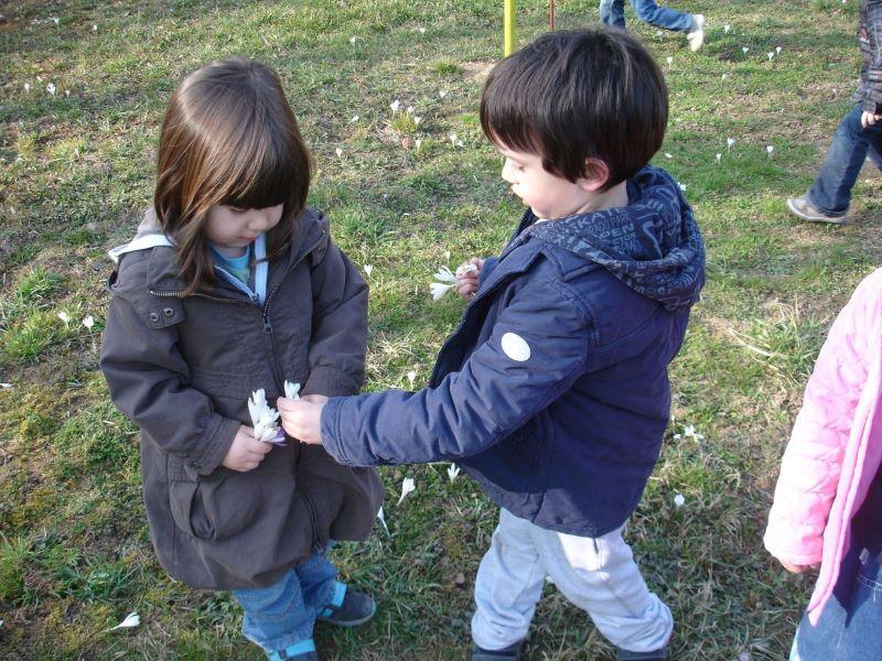 Obavijest o upisu djece u DV sv. Franje